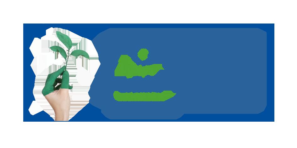 Handtuchrolle 2 lagig Zellstoff mit EU Ecolabel 595 Abrisse im Musterversand
