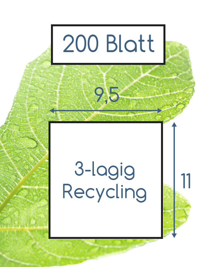 Abmessungen Toilettenpapier 3 lagig recycling 200 Blatt Soft