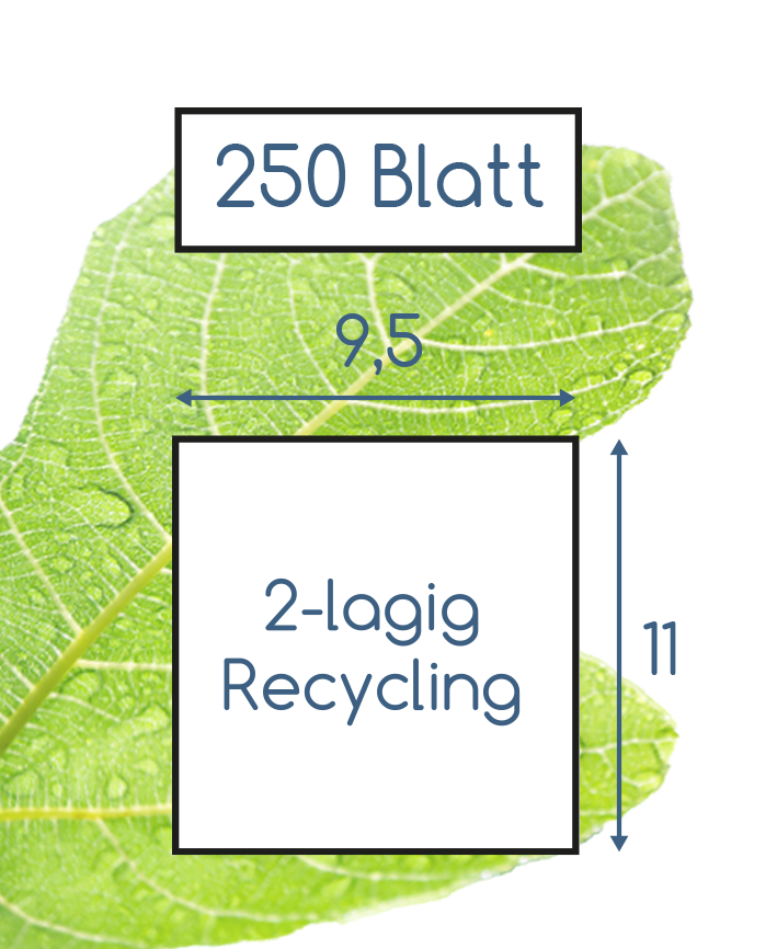 Abmessungen Toilettenpapier 2 lagig recycling 250 Blatt